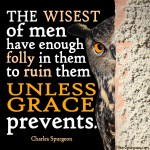 Wisest of owl - Psalm 73 -Spurgeon Photo Quote