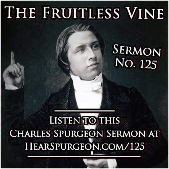 sermon 125, fruitless vine, ezekiel 15, spurgeon audio, sermon audio