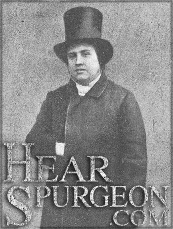 spurgeon top hat, top hat, spurgeon new park, spurgeon sermon audio, young spurgeon, volume 5,