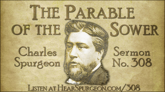 Spurgeon sermon 308, parable sower, Jesus parables, luke 8, charles spurgeon audio, spurgeon podcast,