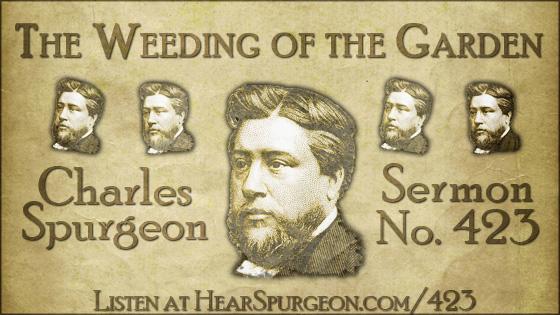 The Weeding of the Garden, spurgeon sermon, volume 7, metropolitan tabernacle, sermon 423, matthew 15,