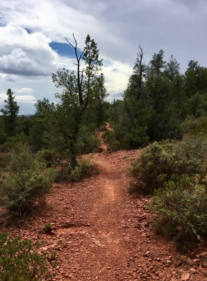 This vertically oriented photo has a trail stretching through its center. The trail is orange-red (reddish soil and rocks) with green trees and shrubs on either side. The sky overhead shows mostly grey and white clouds with a small bit of blue peeking out.