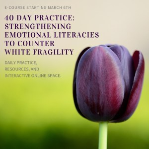 "This e-course announcement shows a purple tulip and background that fades from light tan to bright green. It shares the following information: ""E-course starting March 6th! 40 Day Practice: Strengthening Emotional Literacies to Counter White Fragility. Daily practice, resources, and interactive online community."""