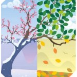 This image from the Inside Higher Ed article (credit: Istockphoto.com/malchev) represents seasonal change. A single nature scene (life of a tree) is divided into quadrants: moving clockwise from the lower-left through a snowy landscape to pink blossoms to green leaves to fallen autumn leaves.