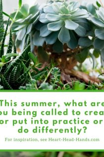 "This image (mostly white and green) shares the text ""This summer, what are you being called to create or put into practice or do differently? For inspiration, see Heart-Head-Hands.com"" with an arrangement of succulents."