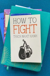 """This image shows a stack of books with Thich Nhat Hanh's How to Fight on the top, a blue bookmark sticking out—all against a blue background. These books teach about """"complaining"""" and speaking up as a killjoy."""