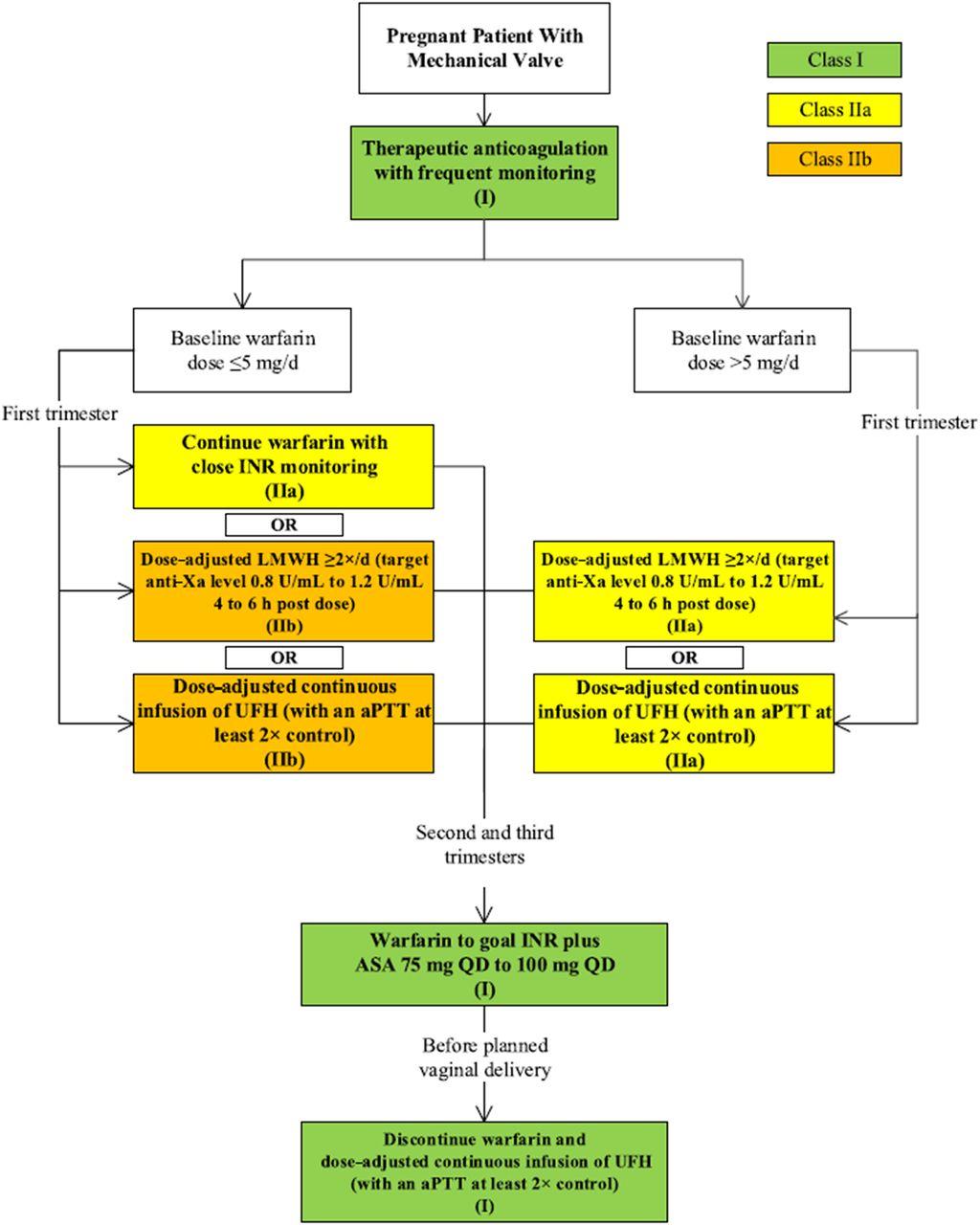 Coagulation Cascade Patients