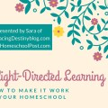 Delight Directed Learning: 7 Ways to Make it Work in your Homeschool. A session in the 2016 Digital Homeschool Convention. Presented by Sara of heartandsoulhomeschooling.com and hsbapost.com