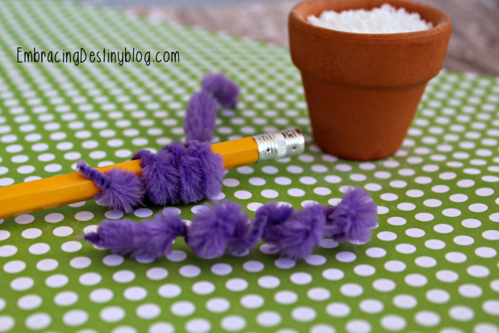 Hyacinth Pipe Cleaner craft for kids