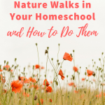 Why You Need Nature Walks in Your Homeschool {and How to Do Them}