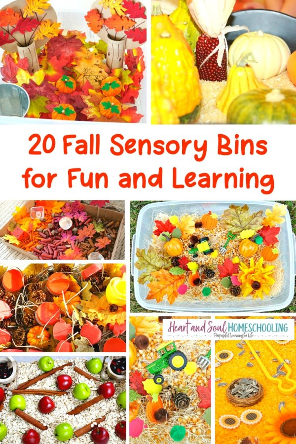 20 Fall Sensory Bins for Fun and Learning