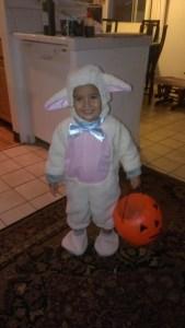 Sweet Ka'ilima Tom, her second Halloween