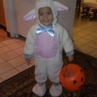 Our littlest lamb