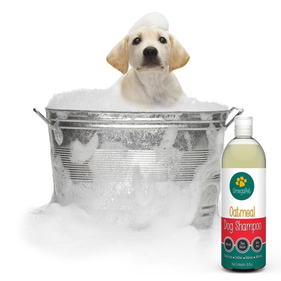Oatmeal & Aloe Dog Shampoo