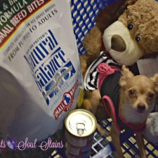 Sofia Has Fallen in Love With Natural Balance Available at PetSmart #NaturalBalance