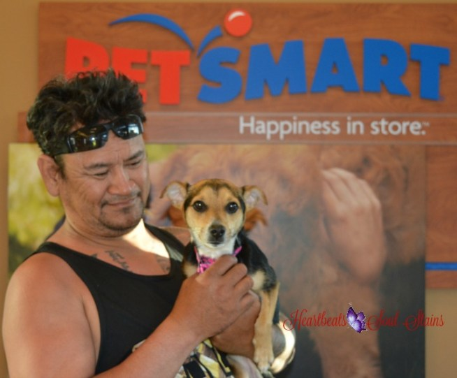 Lehua & Keala PetSmart Grooming