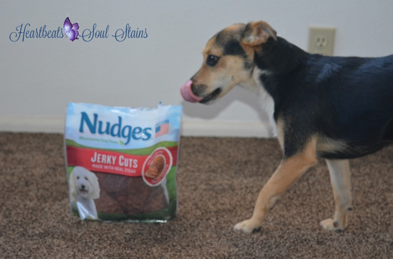 Nudges wholesome dog treats 3