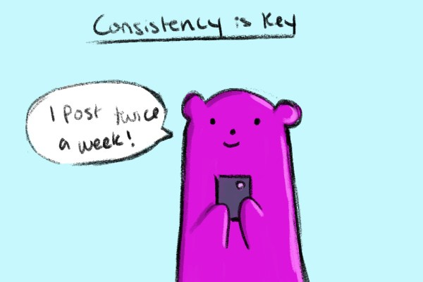 with social media engagement this bear knows that consistency is key