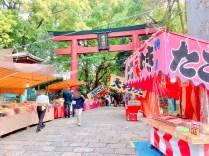 根津神社つつじ祭り11