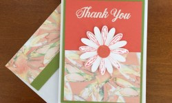 Stampin Up Daisy Delight Thank you card idea - Rosanne Mulhern