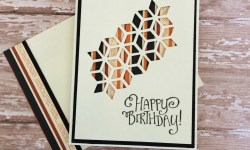 Stampin Up Oh So Eclectic Masculine Birthday Card - Rosanne Mulhern