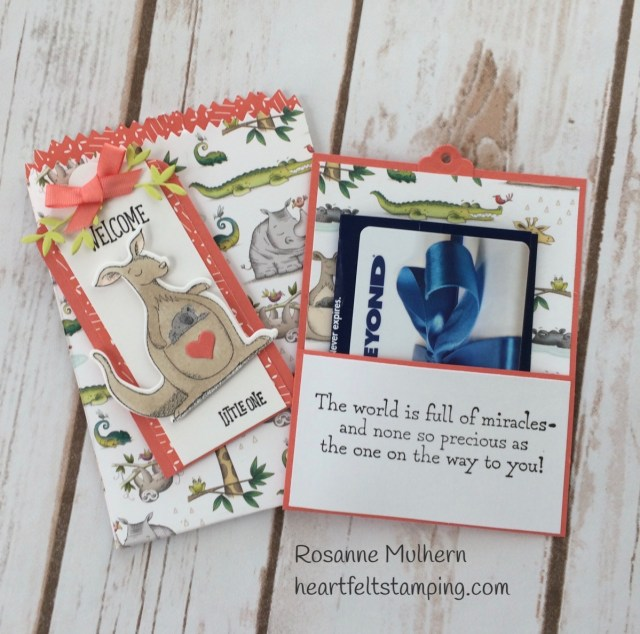 Stampin Up Animal Outing Baby Gift Card Holder-Rosanne Mulhern Heartfelt Stamping