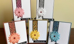 Stampin Up True Love and Daisies All Occasion Cards - Rosanne Mulhern stampin up