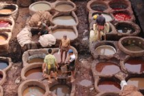 Moroccans working away at the tannery in Fez.