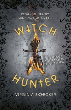 https://heartfullofbooks.com/2016/05/31/review-the-witch-hunter-and-the-king-slayer-by-virginia-boecker/
