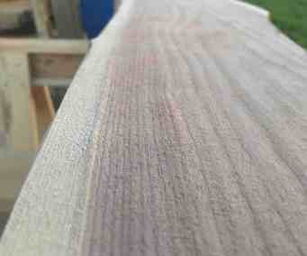 beautiful black walnut grain