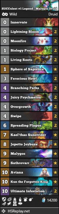 SUCCulent #1 Legend - Malygos Druid