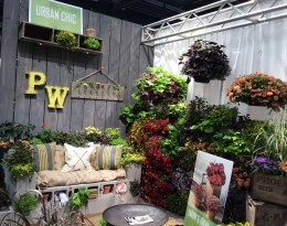Garden room Urban Chic Cultivate 7-11-16 crop