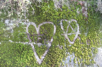 hearts-in-moss
