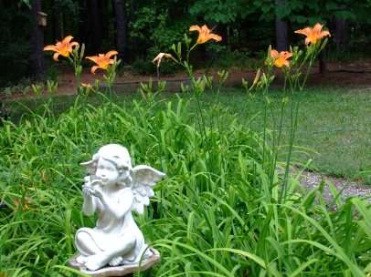first orange dayliles, single