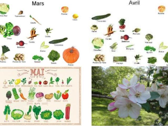 Régime de printemps selon l'Ayurveda