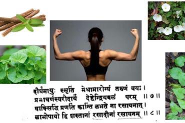 Introduction à l'astrologie védique, le Jyotisha.