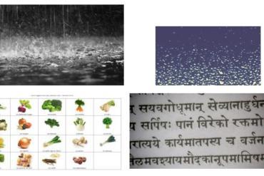 Quelle est votre constitution ou prakriti selon l'Ayurveda?