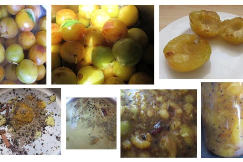 prunes chutney ayurveda paris