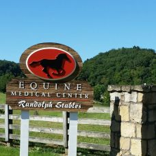 equinemedical