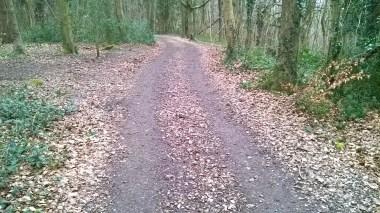 20160308 Standish wood Cotswold Way resurface 2