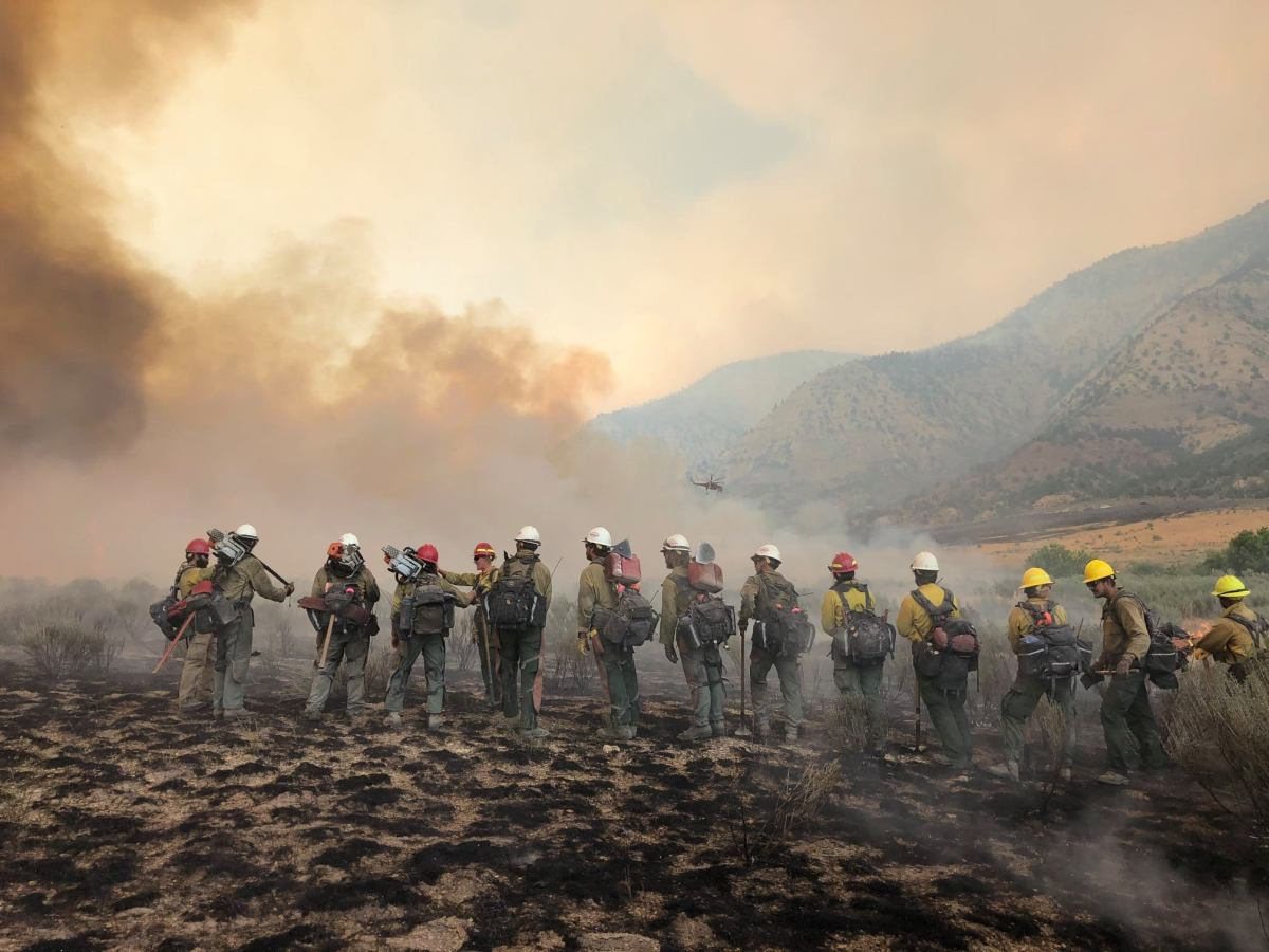 Pine Gulch Fire is now 5th Largest Wildfire in State ...