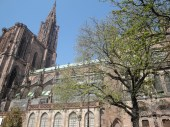 The cathedral in Freiburg was easily the biggest church I've ever seen... crazy.