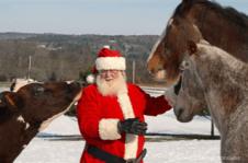 Holiday Christmas Santa