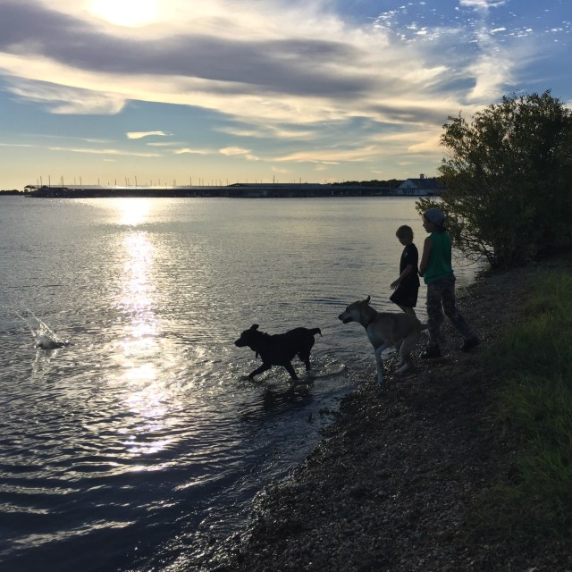 the-boys-and-dogs-at-the-lake