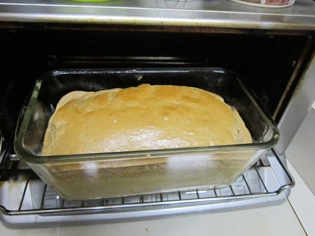 Looks like regular bread, doesn't it?