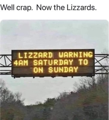 Now The Lizzards