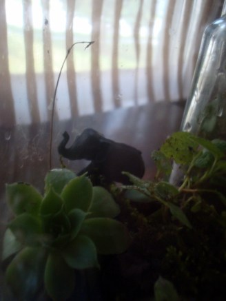 I uncovered this little fella buried in the garden and thought he needed a home.