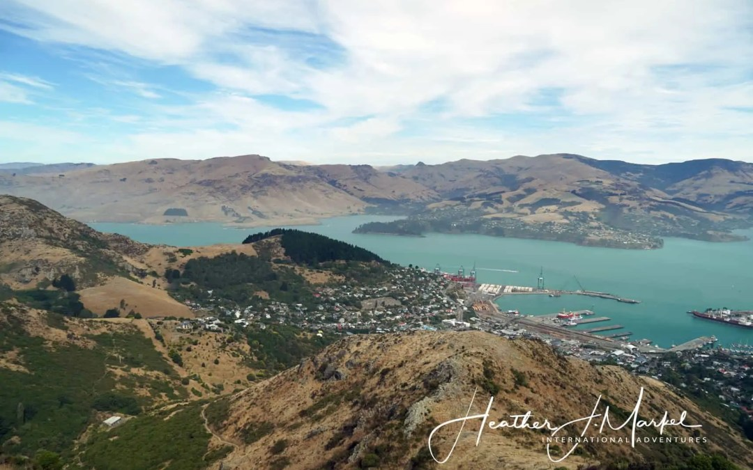 Back In Christchurch – Discover New Zealand