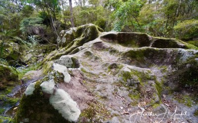 The Waireire Boulders – Put This On Your New Zealand Must See List