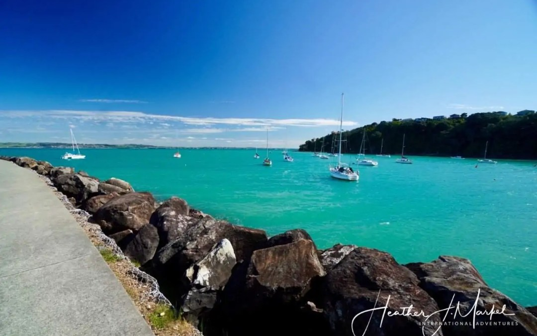 A Day Trip To Waiheke Island: Fun Activities To Do From Auckland